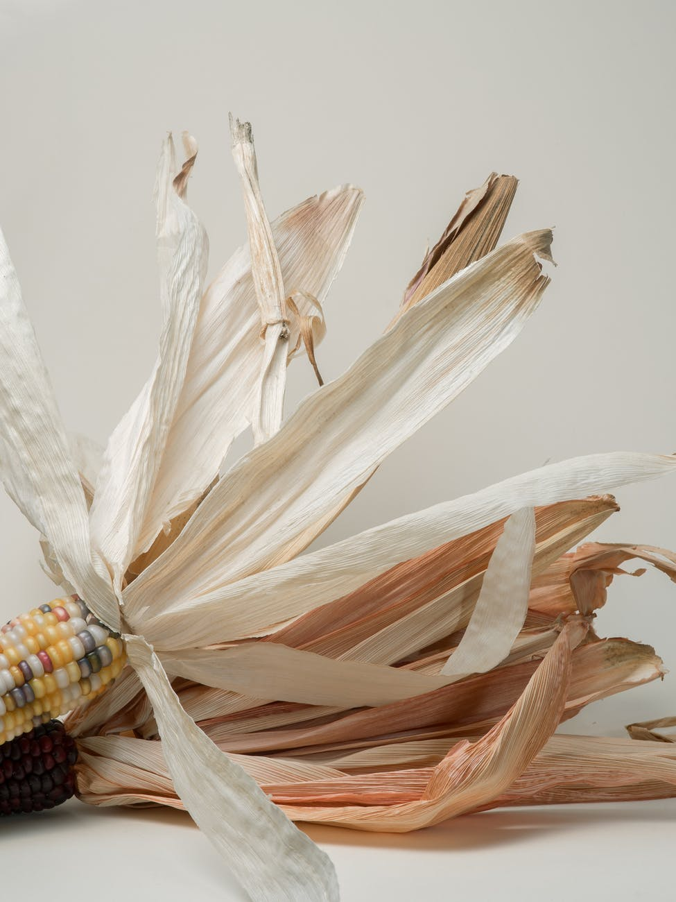 decorative painted mountain corns on white surface